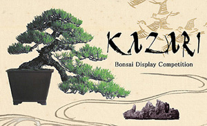 Bonsai Display Competition and Spring Festival at Clark Center, Apr 17