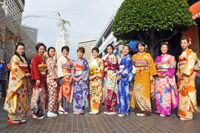 Japanese Chamber Oshogatsu Kimono