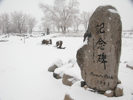 Manznar Japanese Garden 2010 Winter Memorial