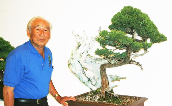 2011 Nisei Week Nanpu Kai Bonsai Exhibition Aug 20 21 10 Am 5pm Japanese Art Culture In La