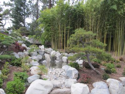 Captivating Huntington JGarden 06 Bamboo