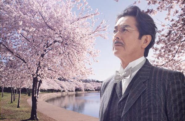 Film Takamine Cherry Tree