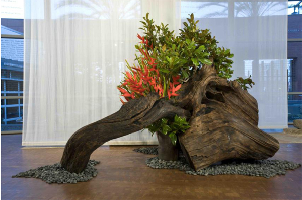20130215 Ikebana Contemporary Art