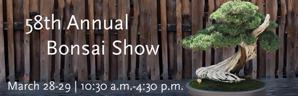 20150327 Huntington Library Annual Bonsai Show 2015