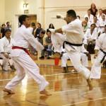 Shotokan Karate of America