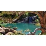 Phoenix Japanese Garden