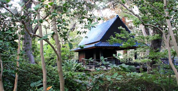 Japanese garden at Descanso Gardens