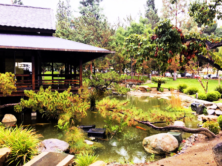 Glendale: Annual Holiday Tea & Japan Culture Day at Japanese Garden, Dec. 17, 12:00 – 3:00PM