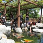 San Diego Garden Summer Camp