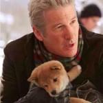 Film Hachi A Dog's Tale